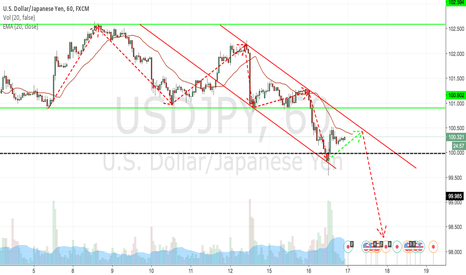USDJPY: Will it be the time for UJ to brake the 100.00 support line?