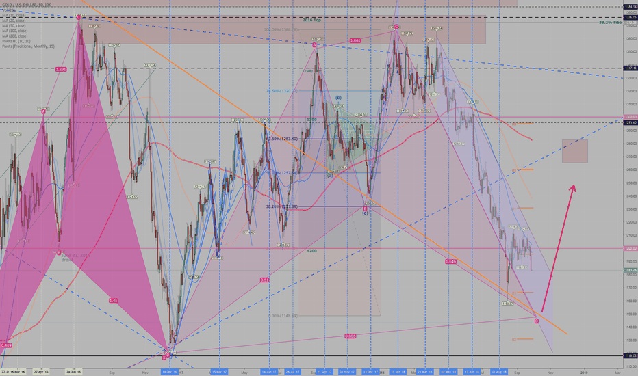 XAUUSD: Gold - Swimming with Sharks
