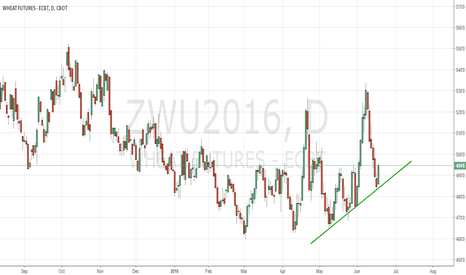 ZWU2016: CBoT wheat leaves us clueless again