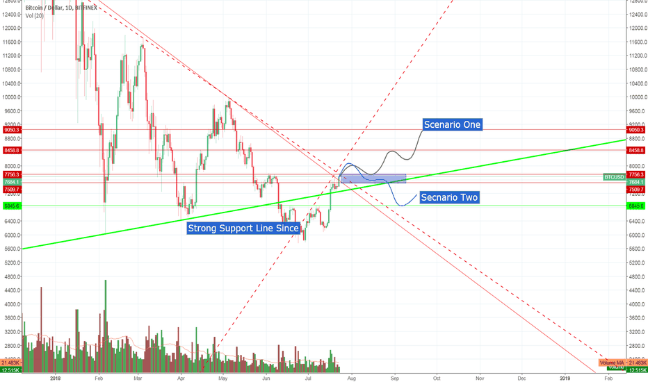 BTCUSD: BTC Moves Into Swamp Area, and the Bulls Aim Higher Target