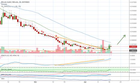 BTGBTC: Bitcoin Gold (BTG) Bullish All Around (482% Earnings Potential)
