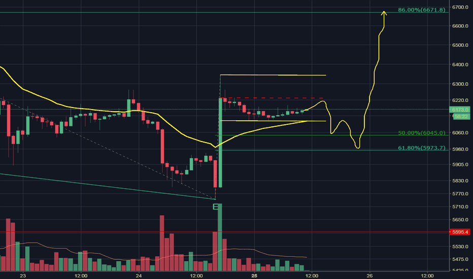 XBTUSD: This Mornings Pre-Pump Dump