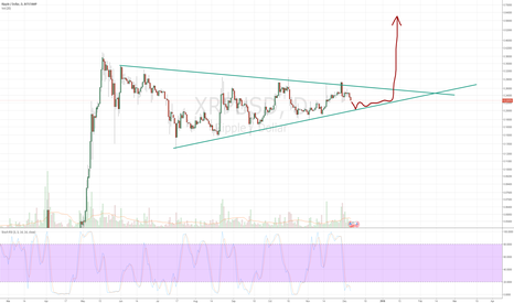 XRPUSD: XRP - always good to buy when others panic sell