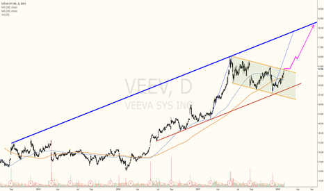 VEEV: Veeva Systems: One of my favourite stocks right now