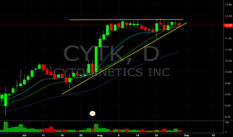 CYTK: $CYTK breakout watch tomorrow