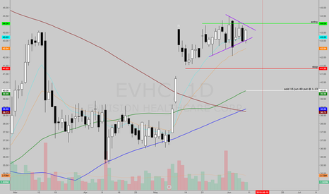 EVHC: EVHC put sale