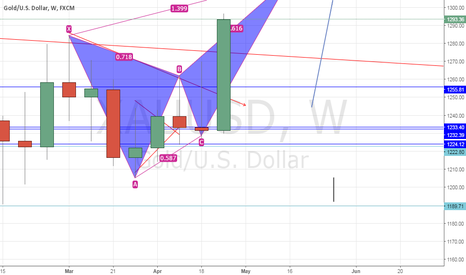 XAUUSD: it seems it going up!