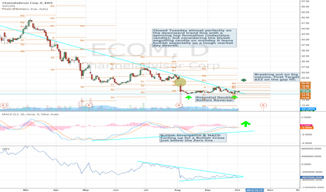 ECOM: ECOM Breaking out $22 Target gap fill