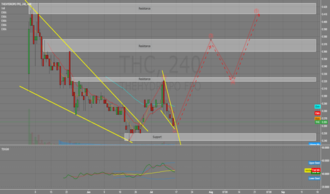 THC: Possible Wave 3 on breakout of wave 2 structure?