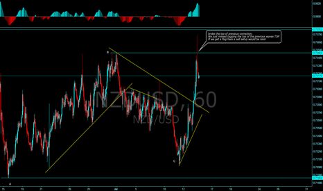 NZDUSD: Looking for a flag to short!