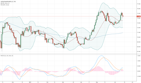 GOLDSILVER: Gold Silver Hedge Trade