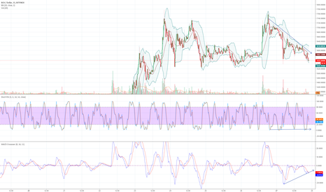 BCHUSD: BCASH Or what are we calling it these days