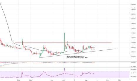 CERC: Nice Trendline has Formed