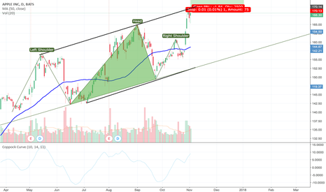 AAPL: Apple long term buy?