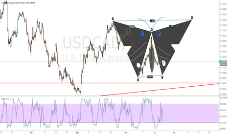 USDCAD:  I am a happy butterfly