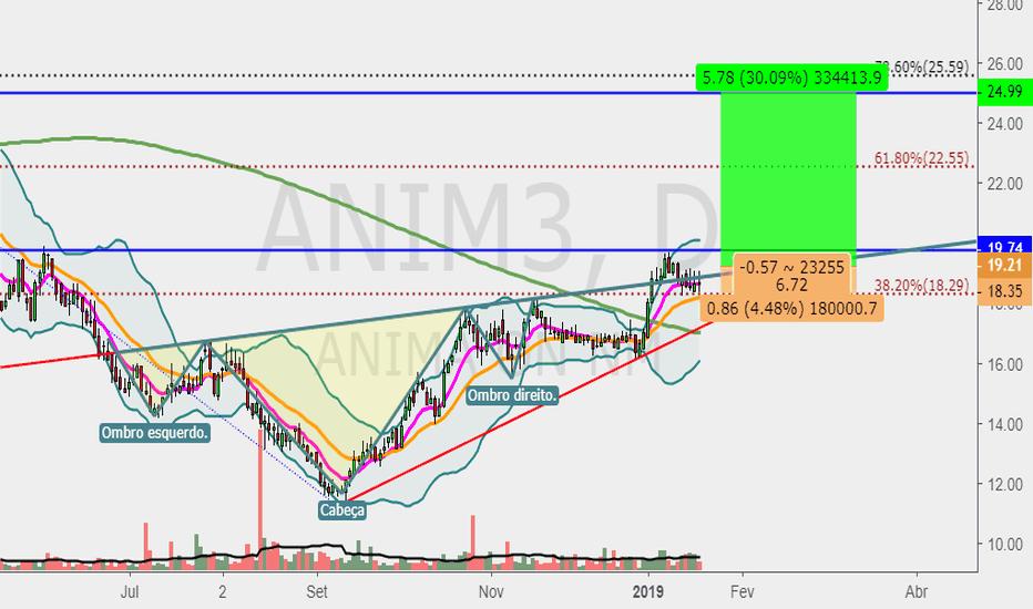 ANIM3: ANIM3 - D - OCOI pullback