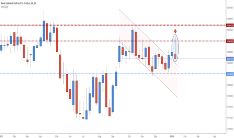 NZDUSD: NZD/USD - Forecast for January 20-24 week