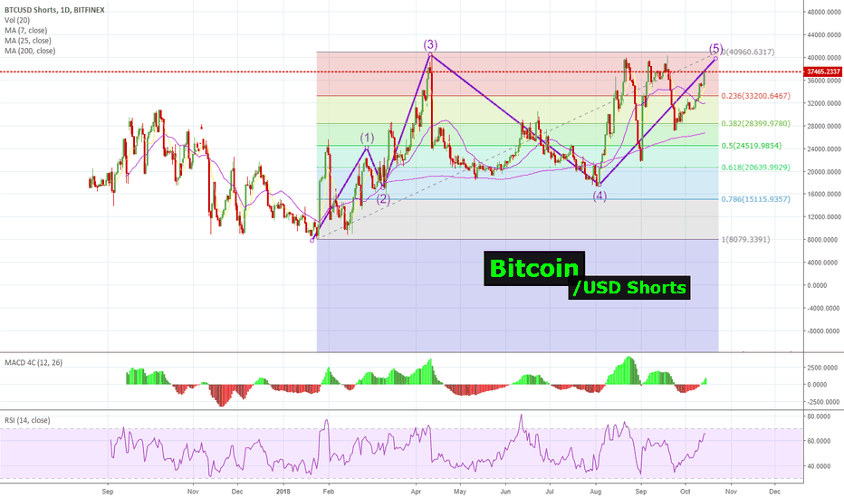 BTCUSDSHORTS: Looks like #Bitcoin | $USD Shorts are going to get DESTROYED!