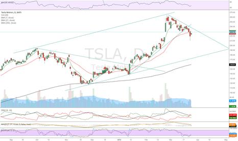 TSLA: Bearish for now
