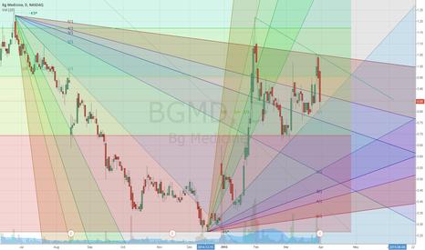 BGMD: BGMD