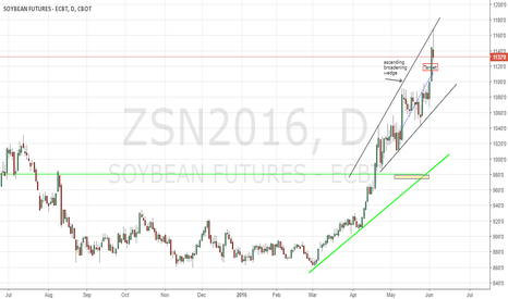 ZSN2016: Soybeans CBoT target reached and position square