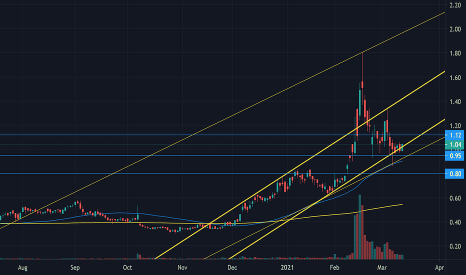 DNN Stock Price and Chart — AMEX:DNN — TradingView