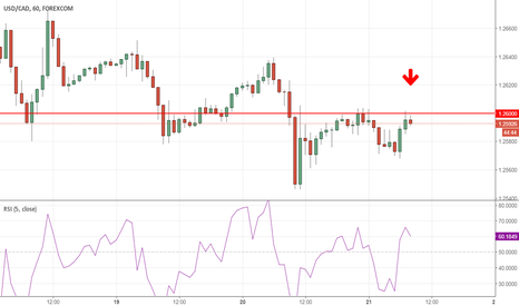 USDCAD: Big Day Today