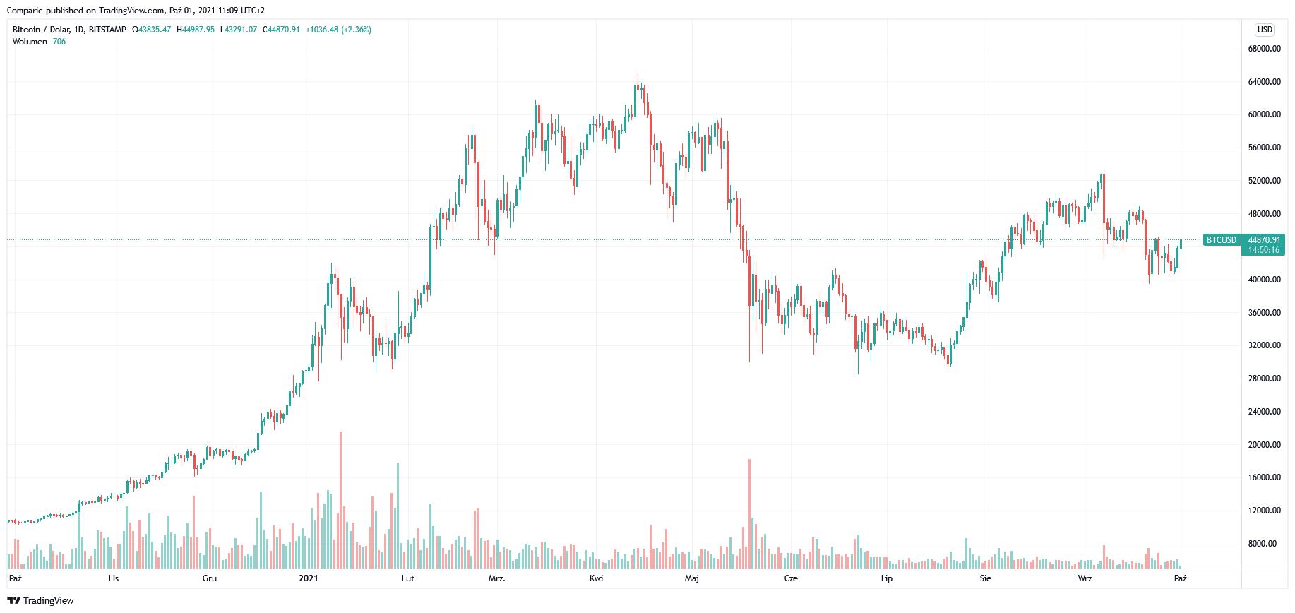 Bitcoin wart nawet 500 tys. dol. za 10 lat, uważa Mike Novogratz