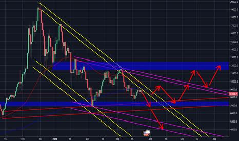 BTCUSD: 【BTC/USD 1DAY】今後のビットコインの値動き予想