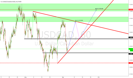 USDCAD: USDCAD H1 OUTLOOK