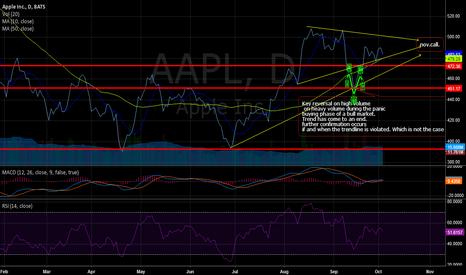 AAPL: apple nov call option