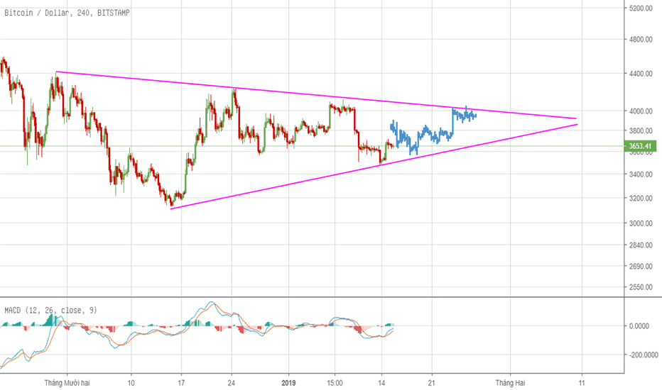 BTCUSD: BTC/USD Có thể sẽ dao động hẹp trong khoảng 1W tới 10 ngày