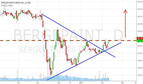 BERGEPAINT: BERGERPAINTS - Will it Breakout?
