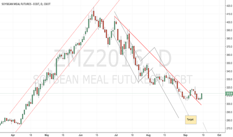ZMZ2016: CBoT soyameal remains a short play for now