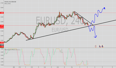 EURUSD: EUR/USD decision point
