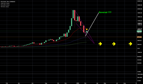 BTCUSD: Where do we go from here ?