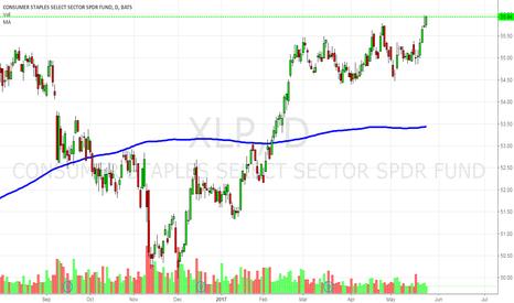 XLP: XLP- Conservative Investor?