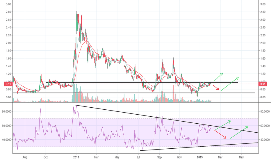 XLY: Consolidating just below resistance lines, waiting for signal.