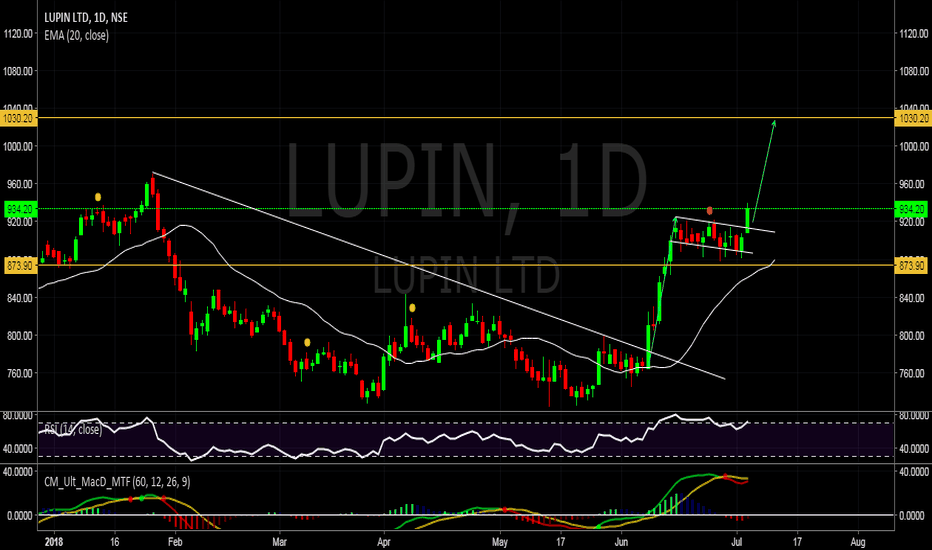 LUPIN: flag breakout