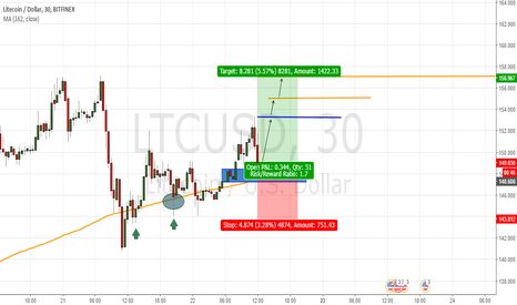 LTCUSD: Support (Moving average 162)