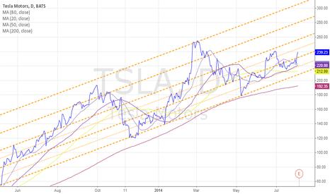TSLA: TSLA Long Term Channel