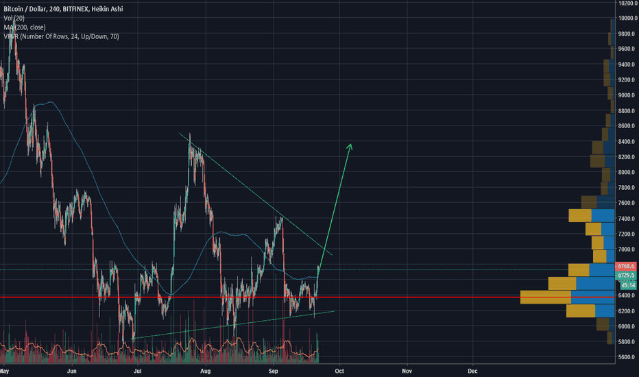 BTCUSD: The bitcoin bull is upon us.