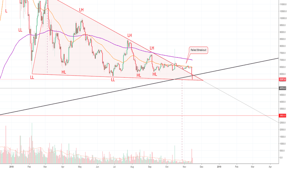 BTCUSD: We're on The Verge of A Panic Selloff — BITCOIN! (BTC)