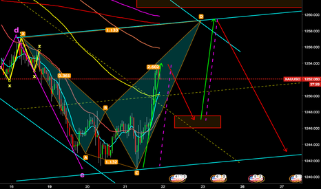 XAUUSD: Bear Shark Gold
