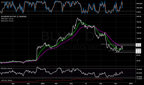 BLUE: Initiating Long Stock