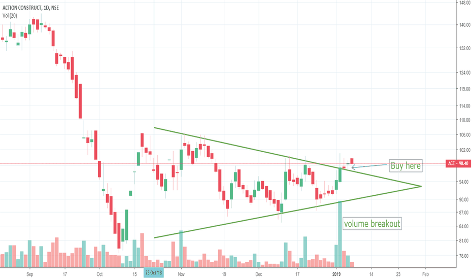 ACE: Action Construction Equipment(ACE) price and volumn breakout