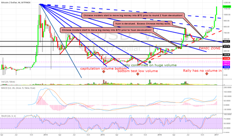 "BTCUSD: BTC WEEKLY CHART: ""The Panic Zone"" We're Going To MARS"