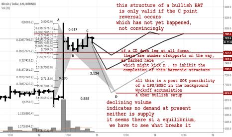 BTCUSD: Post Pump Possibilities-Potential bullish bat