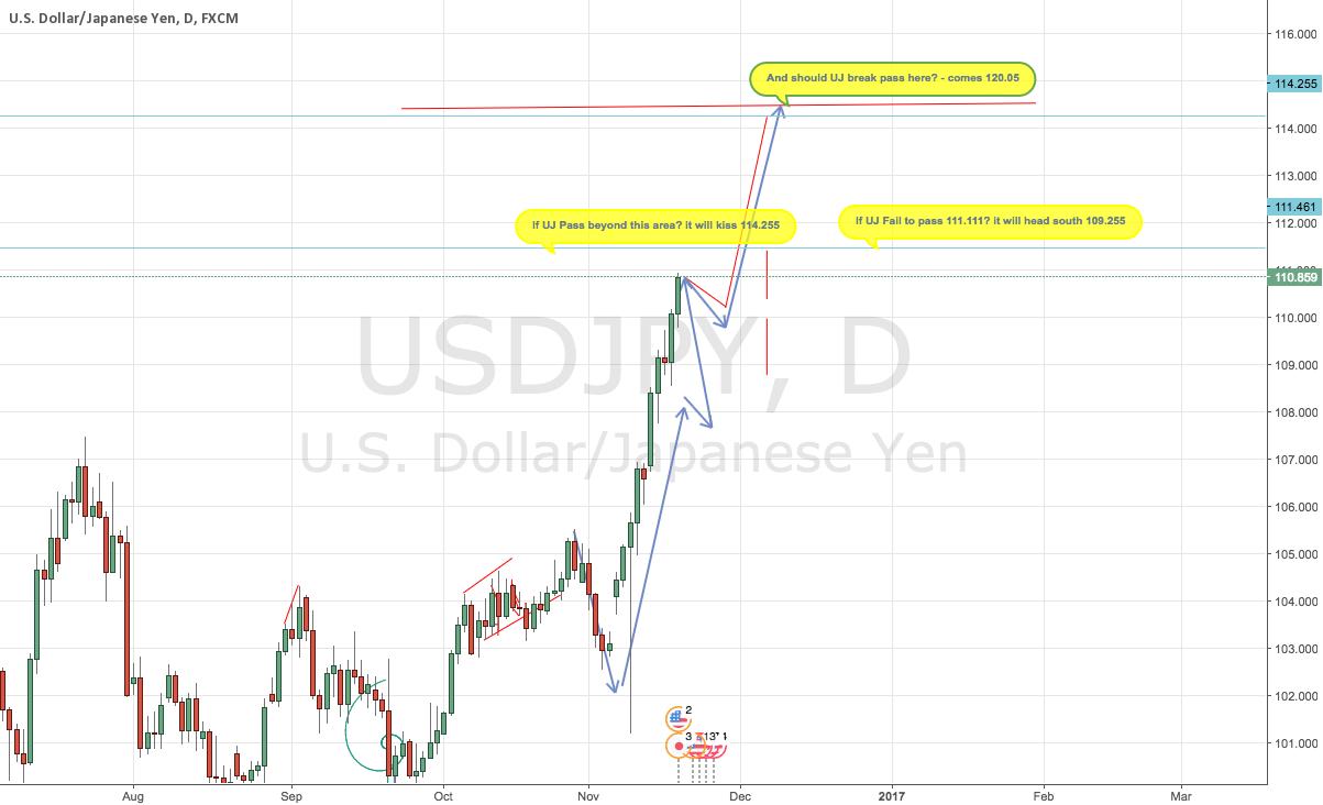 USD JPY Forecast | US Dollar Japanese Yen - Here Comes Mr BULL