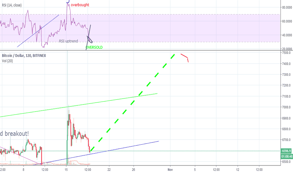 BTCUSD: Bitcoin: I'm in! Fantastic predictions based on RSI  & HOPE!
